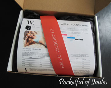 Wantable Intimates Box - Joules