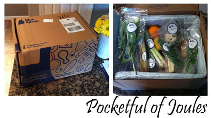 Blue Apron delivery box - Pocketful of Joules