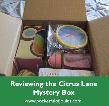 citrus lane mystery box