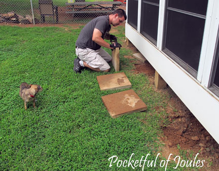 Dog proofing porch - 4