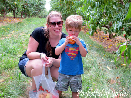 Picking peaches - me and Jack