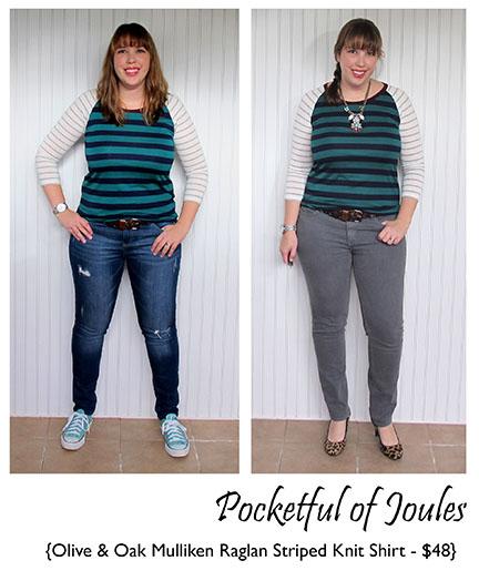 Olive and Oak Mulliken Raglan Striped Knit Shirt - Stitch Fix