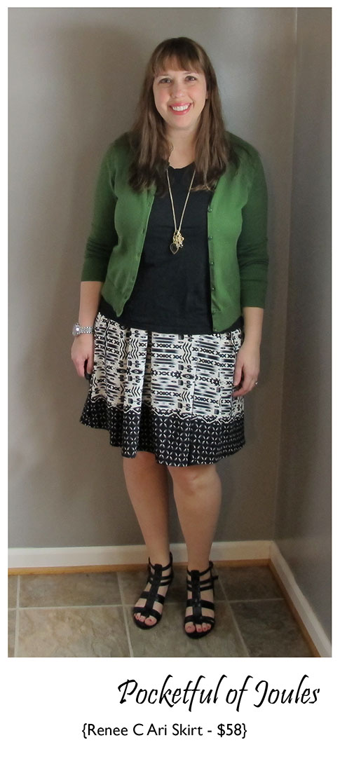 Renee C Ari Skirt 2 - Joules