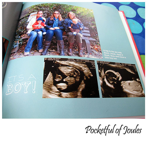 Pregnancy book 2