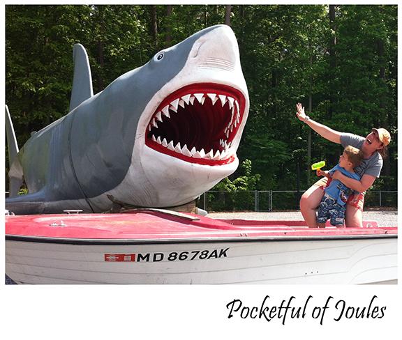 me and Jack shark