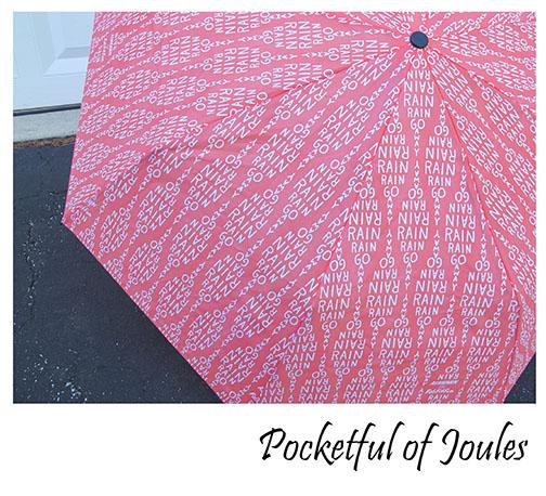 FabFitFun - umbrella